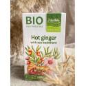 Ingvera tēja ar smiltsērkšķiem BIO, 40g (20x2g)